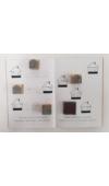 Falusi állatok pecsételős munkafüzet szettben: négy pecséttel és tintapárnával
