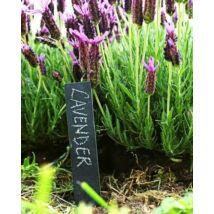 Pala növény névtábla, 6 db-os szett