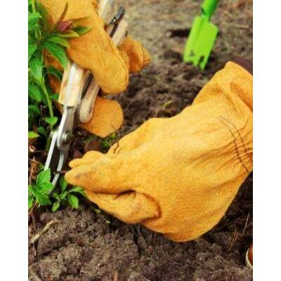 Bőrkesztyű kerti munkákhoz