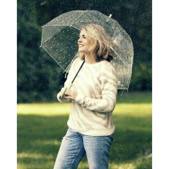 Méhecskés, átlátszó esernyő