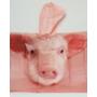 Kép 4/8 - Gyerek szett malacos: esőkabát, kesztyű és vödör